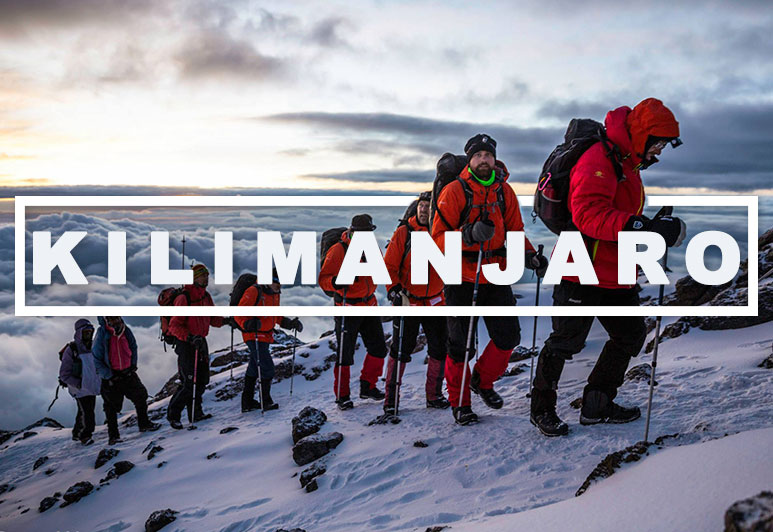 Climb Kilimanjaro - 7 Summits